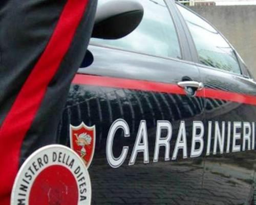 Incidente a Cercola, sotto il Ponte di Caravita un camion investe un cavallo. Intervengono i Carabinieri