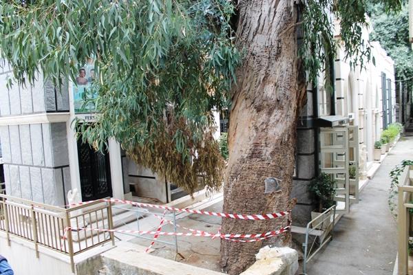 MALTEMPO – Danni anche al cimitero di Poggioreale