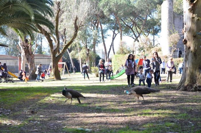 Lo Zoo di Napoli premia gli studenti meritevoli