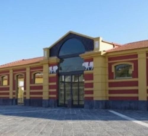 """Portici. Questione Museo del Mare. Stamane la conferenza stampa del PD: """"Marrone, che Macello!"""""""