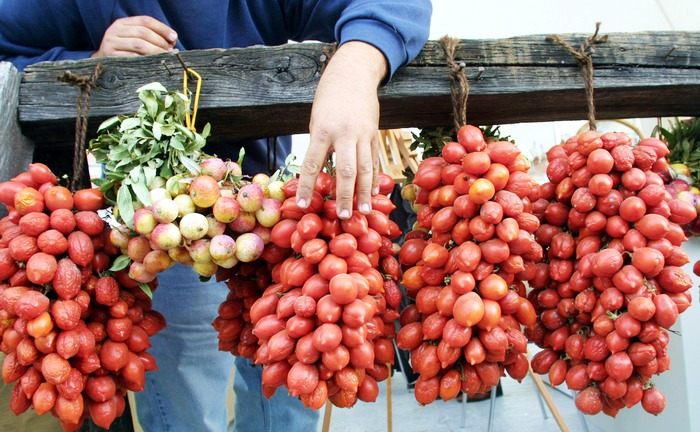 Falso pomodorino del piennolo, sequestrati 100mila euro di merce a San Giorgio a Cremano