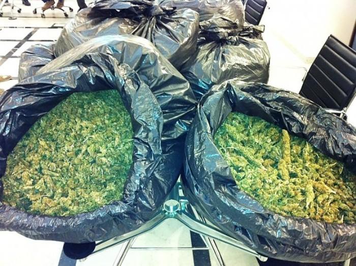 40 kg marijuana in auto, due arresti, la polizia ha anche sequestrato ingente somma di denaro