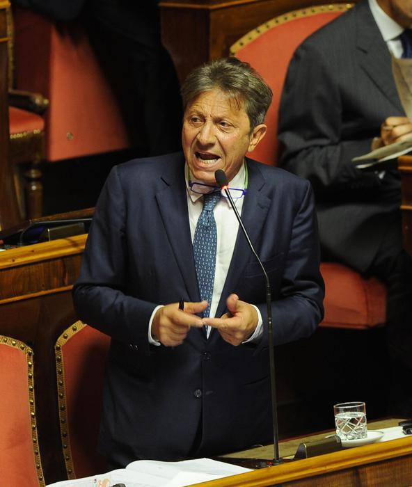 A fuoco auto senatore Ciro Falanga, indagano i Carabinieri