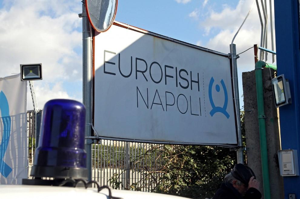Una testa di maiale e colpi di pistola nel piazzale dell'Eurofish Napoli nel 2014 finita nel disastro del Norman Atlantic