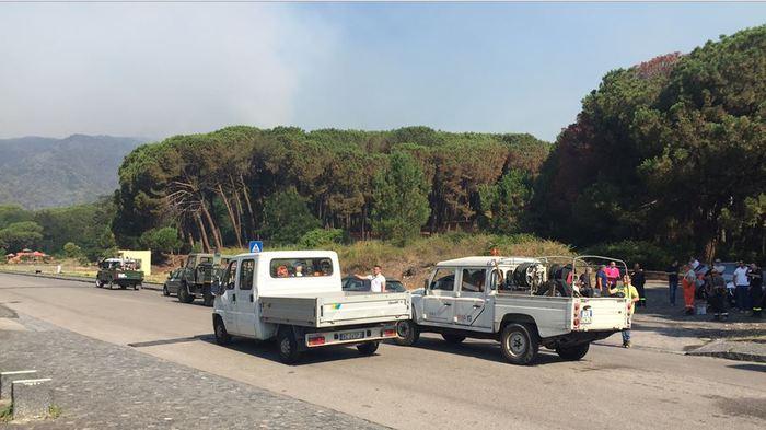 """Incendio doloso Parco Vesuvio: fiamme ormai sotto controllo. Il Presidente Casillo: """"Disastro criminale"""""""