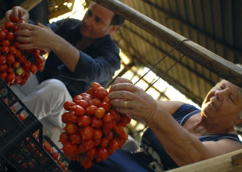 CONTRO IL CAPORALATO – La filiera corta, la passione e l'agricoltura 2.0, la ricetta di Pasquale Imperato