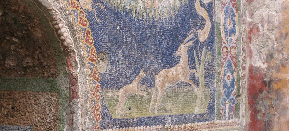Next Step vi porta into Herculaneum: Aperi-visita agli scavi di Ercolano. Domenica 6 novembre alle ore 10:30