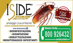 banner-iside