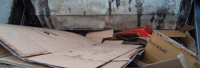 Rubano cartoni dai cassonetti e guadagnano 400 euro al giorno, scoperti dai vigili urbani