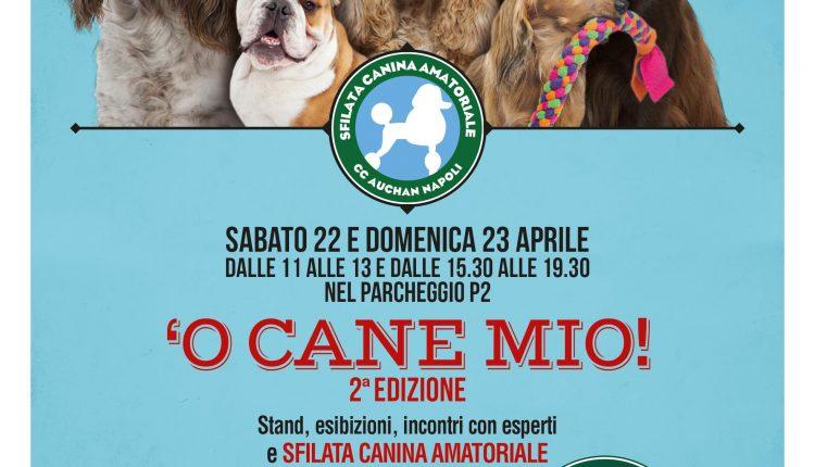 """UN WEEKEND DEDICATO AGLI AMICI A 4 ZAMPESabato 22 e domenica 23 aprile la seconda edizione di """"O cane mio"""" al Centro Commerciale Auchan Napoli"""