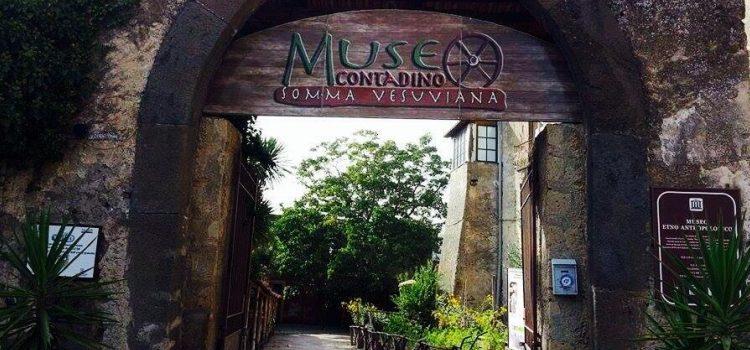 eSTATE AL MUSEO: musica, buon cibo e tradizione al Museo Contadino di Somma Vesuviana.