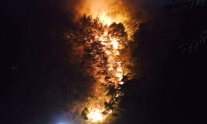 """Frane sul Vesuvio, Langella (Ala-Sc): """"Spiace dire 'lo avevo detto', ma ora interventi messa in sicurezza e più vigilanza"""""""