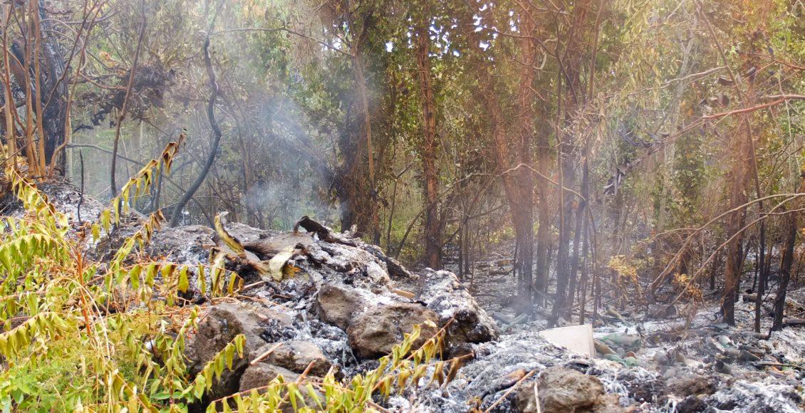 Incendi sul Vesuvio, aggiornamento dei dati qualità dell'aria