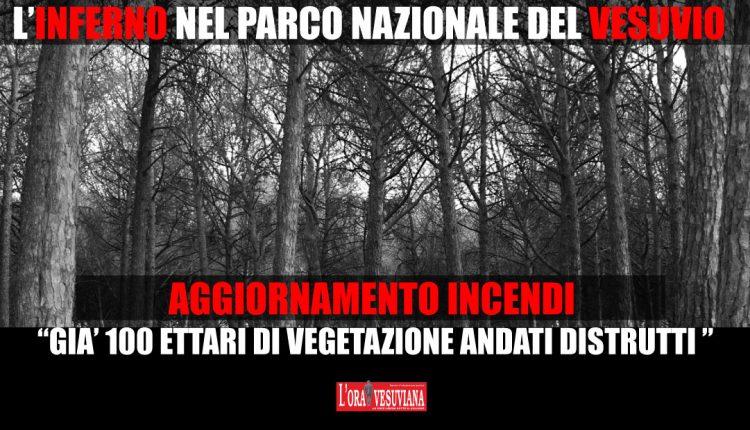 AGGIORNAMENTO INCENDI. La situazione dell'inferno nel Parco Nazionale del Vesuvio