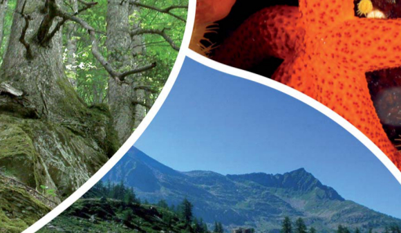 'A Passi di Biodiversità', si inaugura la mostradell'Ente Parco Vesuvio