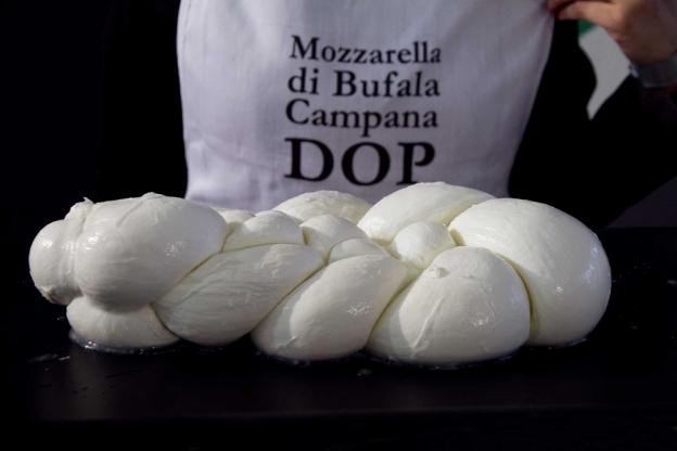 Eccellenze campane: la mozzarella di bufala Dop supera i record di produzione con un incremento del 7,5%