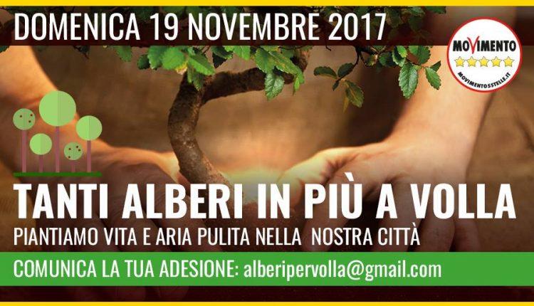 """""""Restituire la Bellezza a Volla"""": il 19 Novembre la prima Festa dell'Albero ad opera del M5s"""