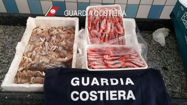 Filiera della pesca: a Caserta, Napoli e provincia 3.200 kg di prodotti ittici sequestrati