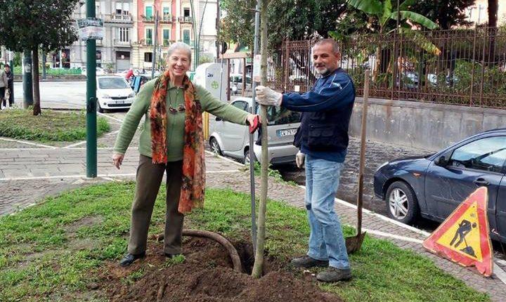 """Napoli – Piantati 13 alberi nella Prima Municipalità. Va avanti il progetto """"Un albero per la vita"""""""