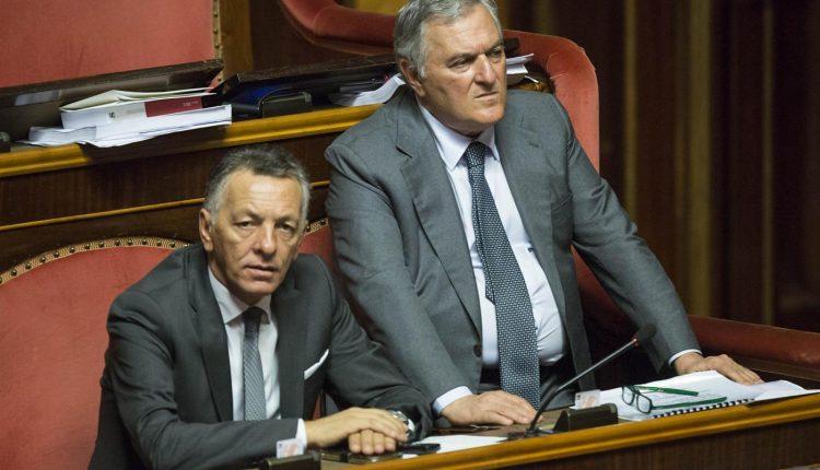 """""""Un cantiere nella pineta degli Scavi"""", i senatori Ala chiamano il Ministro Franceschini e il Governatore De Luca"""
