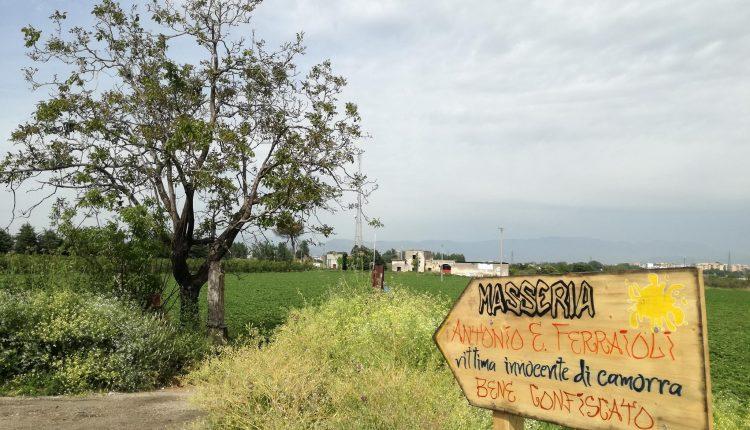 SOCIALE E CULTURALE – Arriva la Pasquetta alla Masseria Antonio Esposito Ferraioli: nel bene confiscato alla camorra l'happening picnic