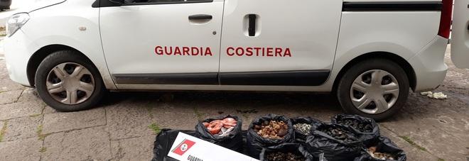 A Torre Annunziata, otre un quintale di prodotti ittici sequestrati dalla Guardia costiera: 4 abusivi denunciati
