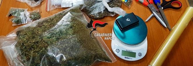 Pomigliano d'Arco, marijuana in casa, arrestato studente incensurato