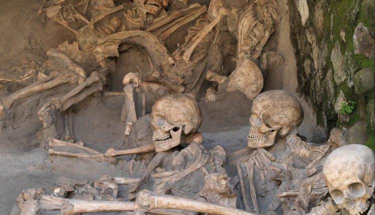 Mercoledì 25 aprile 2018, esperti di Genetica in visita a Ercolano per lo studio del DNA dei reperti dell'antica città