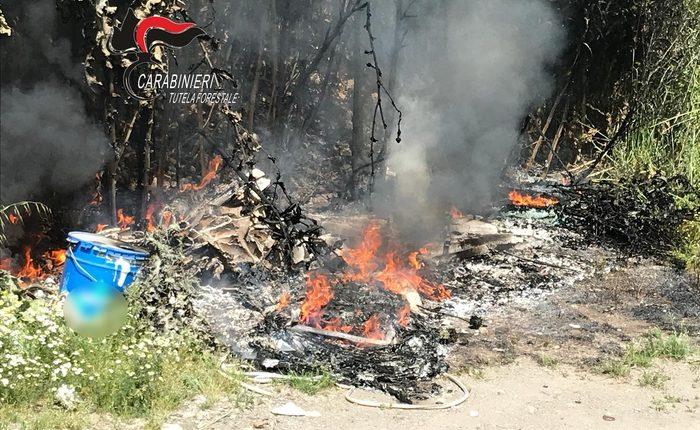 Incendia rifiuti, 90enne denunciato a Marigliano dai Carabinieri