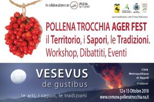 Banner Pollena Ager Fest