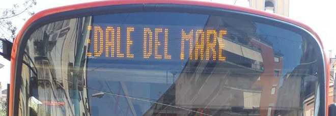 Ercolano, dal 1 febbraio collegamento via autobus tra centro città e Ospedale del Mare