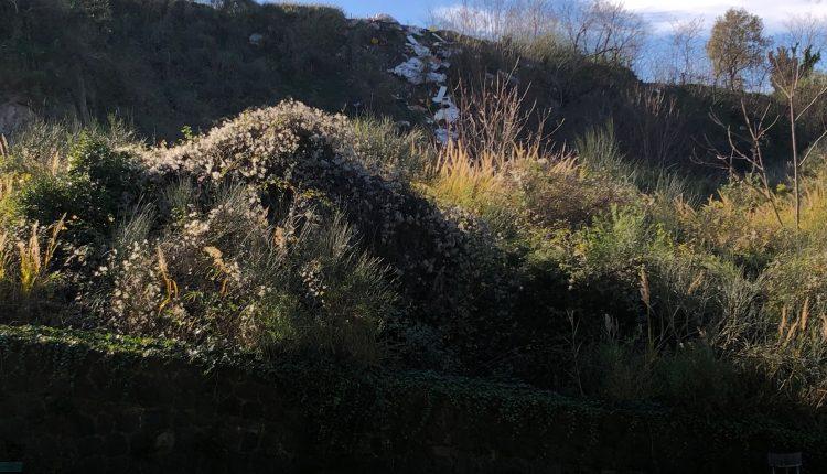 I Conetti Vulcanici invasi dai rifiuti. L'area protetta della Città Metropolitana nel più totale abbandono