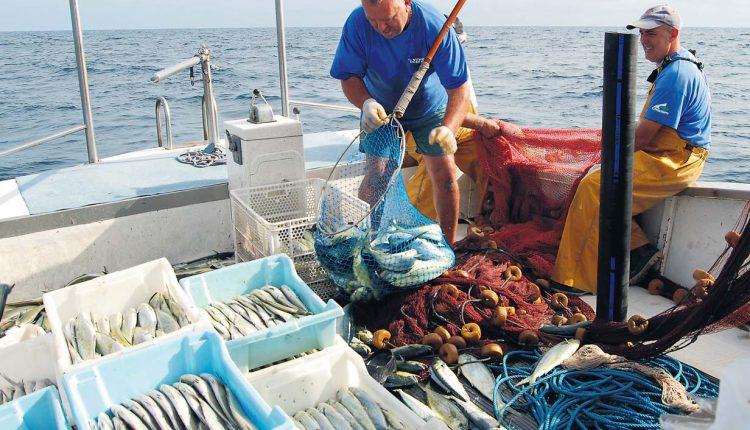 Med Cooking, mare e pesca sostenibili:Cibo med e snergia con Marevivo per protezione ambiente marino a Castellammare di Stabia