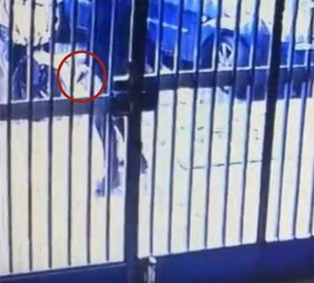 Noemi ferita con armi da guerra. Il killer ripreso in un video fugge e scavalca il corpo a terra della bimba, che resta grave