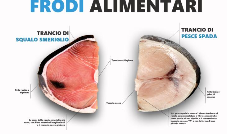 """Sono stranieri quasi 8 pesci su 10 consumati in Italia dove è già scattato ad inizio aprile il """"Fish Dependence Day"""""""