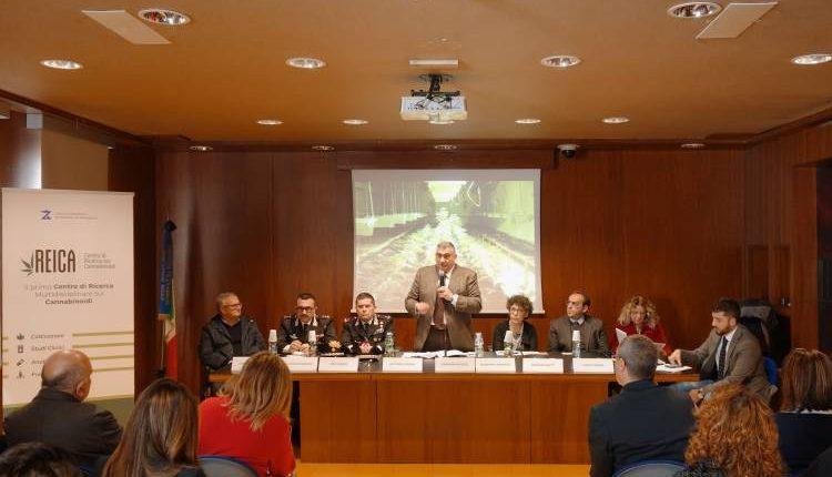 A Portici il primo centro multidisciplinare italiano per la ricerca sui cannabinoidi