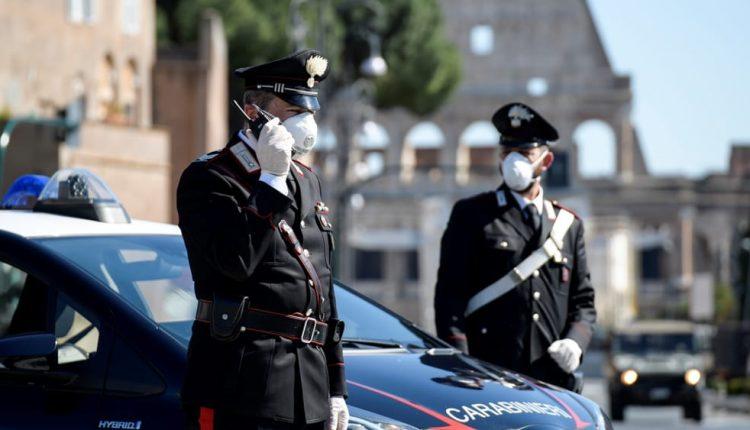 I Carabinieri setacciano la zona vesuviana, due arresti, sequestro 31 piante cannabis