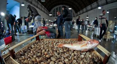 Dal Mercato di Volla: 1,7 quintali di pesce in dono alle famiglie bisognose