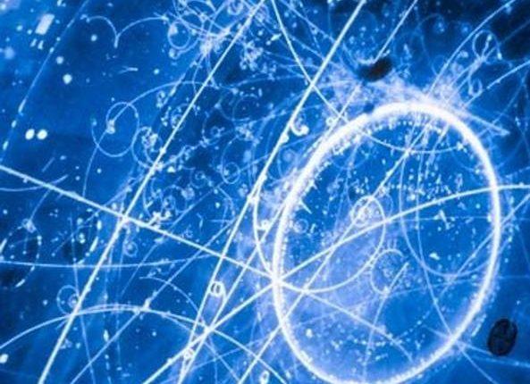 LE ECCELLENZE NAPOLETANE DELLA RICERCA – Il Dipartimento di Fisica della Federico II in collaborazione col Tokai to Kamioka pubblica su Nature una ricerca sui neutrini