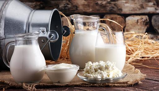 I batteri lattici hanno un ruolo fondamentale nell'asse alimenti-microbioma intestinale: uno studio della Federico II pubblicato su Nature Communications