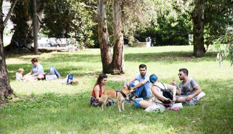 """SaràNapolisabato 19 e domenica 20 settembre a ospitarela""""duegiorni pet friendly"""" più famosa d'Italia in outdoor.Quattrozampeinfiera: picnic, musica e tanto divertimento per tutta la famiglia"""