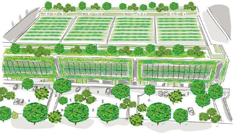 Portici, Air Heritage ospita l'esperienza Prato Urban Jungle nel webinar sulla forestazione urbana
