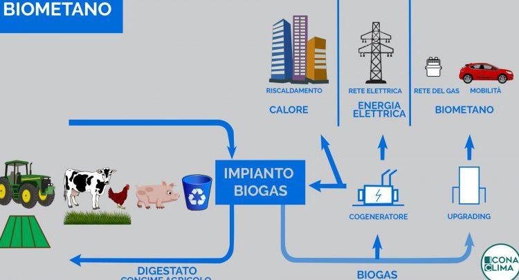 Impianti green a Palma Campania, ecco le indicazioni della commissione consiliare istituita dal sindaco Nello Donnarumma