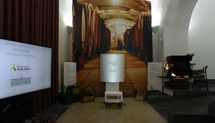 IL FUTURO DEL VINO TRA INNOVAZIONE E TRADIZIONE al MAVV Wine Art Museum – Reggia di Portici. Sabato 6 febbraio 2021 – dalle ore 10.30 alle 12 in Diretta Live Streaming sui Canali Social