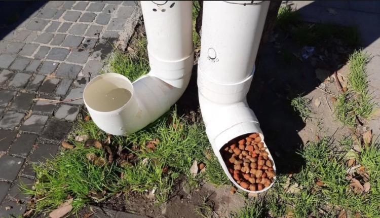"""A Somma Vesuviana, i vecchi tubi delle grondaie diventano dispenser in strada di acqua e crocchette per i randagi. Parte il progetto dell'Associazione """"Cani di Somma"""""""
