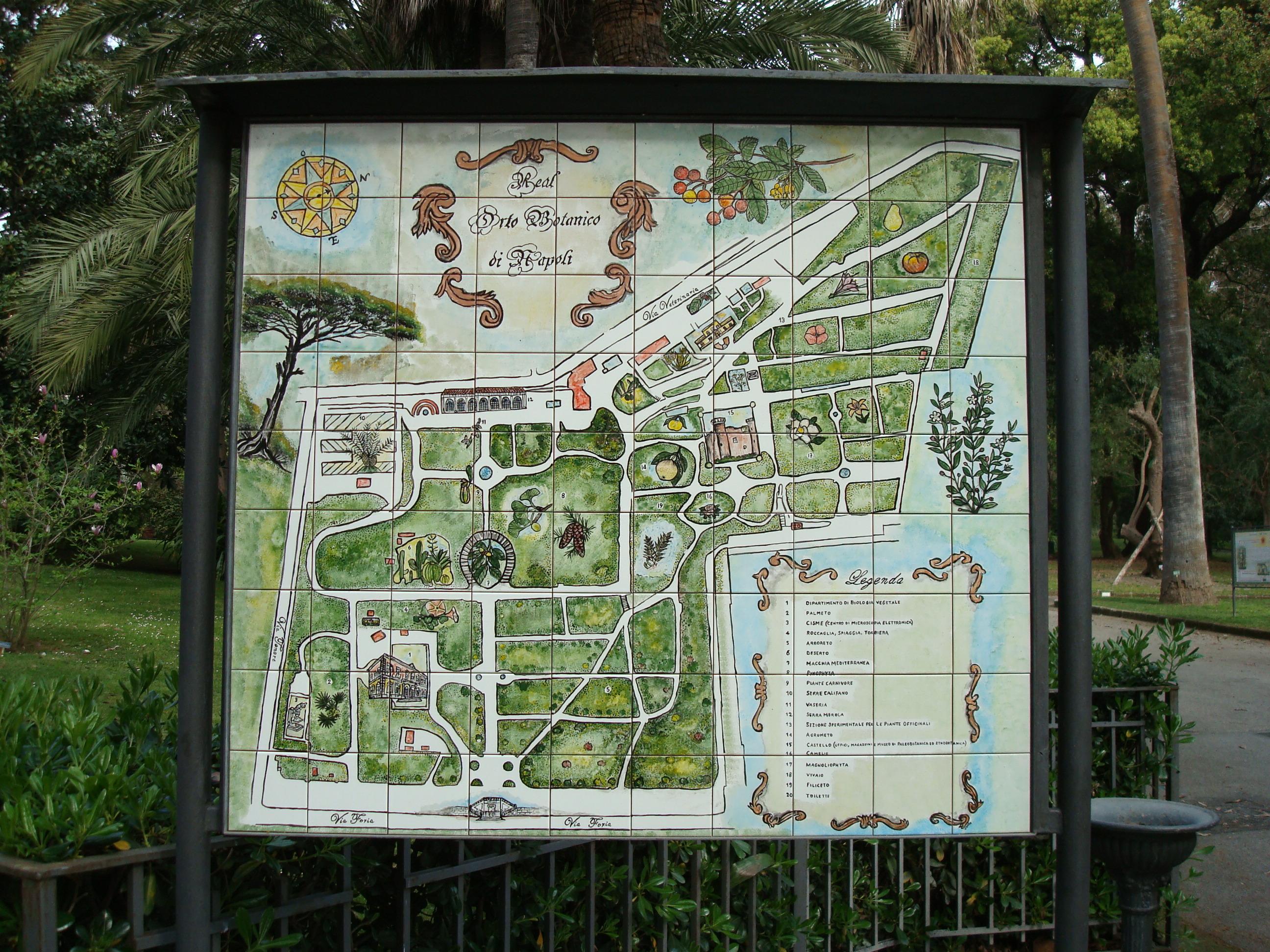 """L'Orto Botanico dell'Università degli Studi di Napoli Federico II, ospita dal 19 al 21 novembre la sesta edizione della """"Festa dell'Albero"""""""