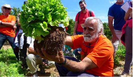 Agricoltura, nuovi bandiper 1,8 miliardi in Campania