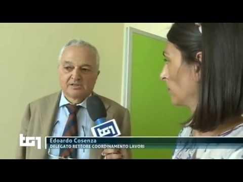 ORDINE DEGLI INGEGNERI – Il più votato è stato il Prof. Edoardo Cosenza