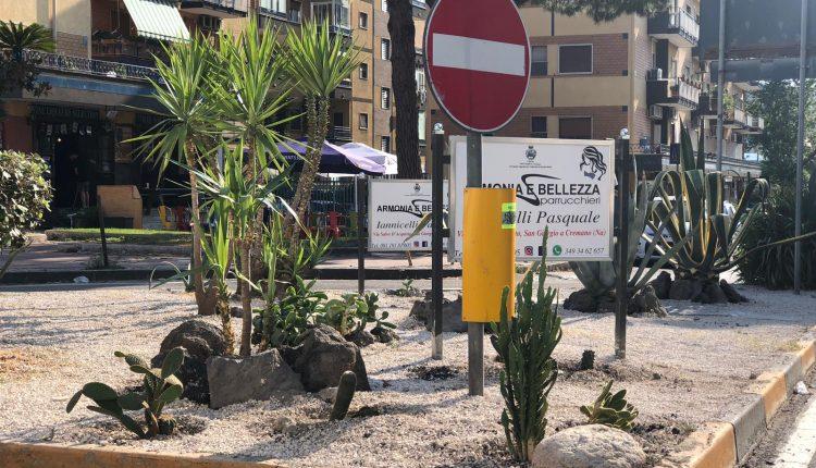 """Adotta un'aiuola: cresce il numero degli affidamenti a San Giorgio Cremano , GiorgioZinno: """"Appartenenza alla città sempre più forte"""""""