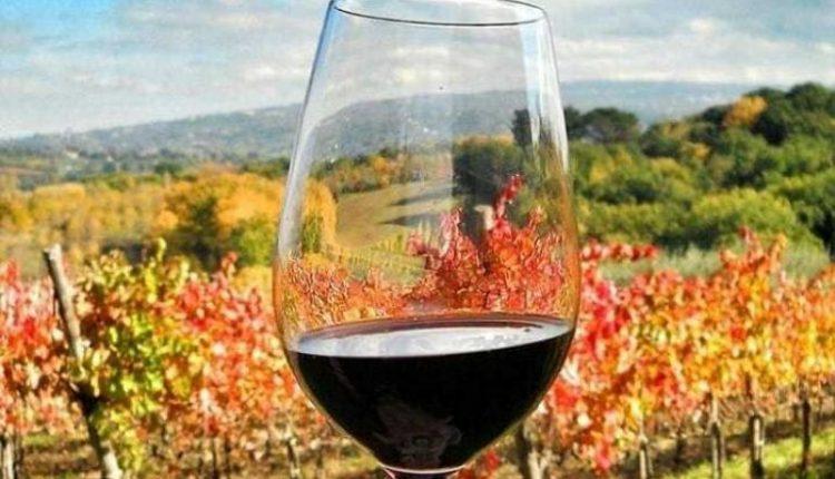 Il MAVV Wine Art Museum di Portici on the road: al via una serie di incontri fuori dalle mura della Reggia di Portici, prossima tappa a Taurasi nell'ambito del Christmas Wine Fest